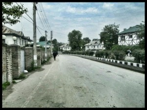 Local neighborhood in Srinagar