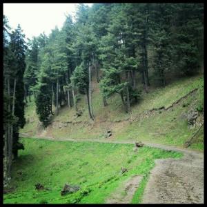 The trek route